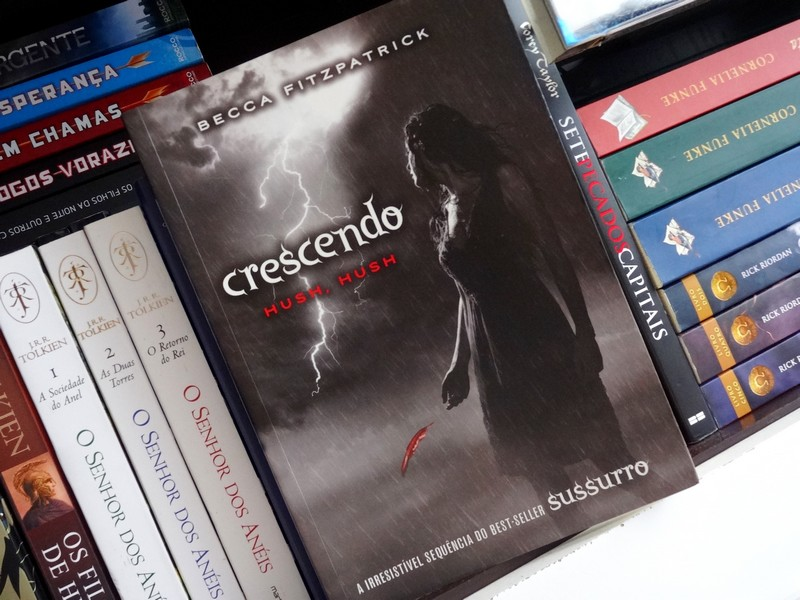 resenha-crescendo-hush-hush-01